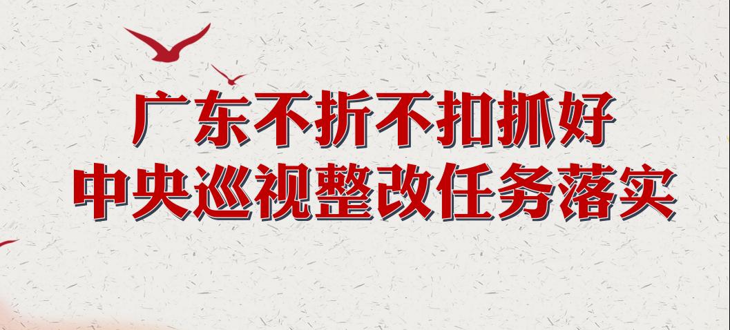广东不折不扣抓好中央巡视整改任务落实