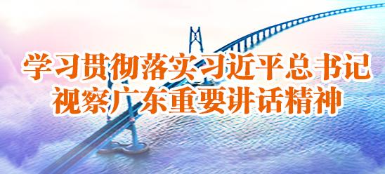学习贯彻落实习近平总书记视察广东重要?#19981;?#31934;神